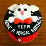 Adam's 6th Birthday