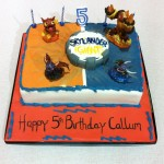 Callum's 5th Birthday
