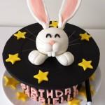 Gabriella's Birthday